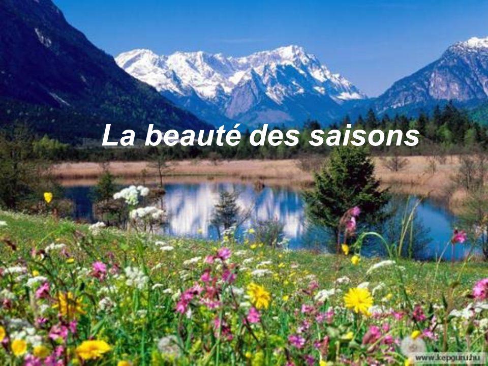 La beauté des saisons