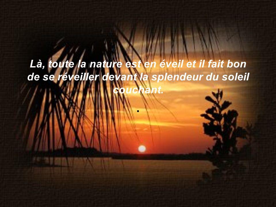 Là, toute la nature est en éveil et il fait bon de se réveiller devant la splendeur du soleil couchant..