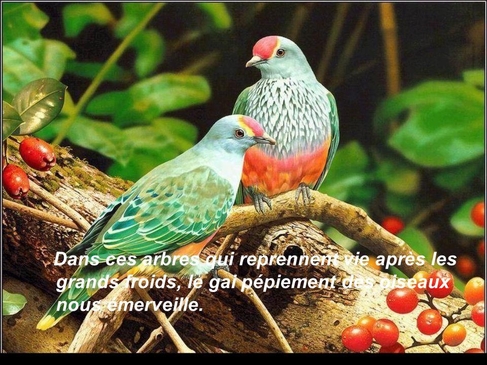 Création Mado Les Amours de Mado http://www.lesamoursdemado.com Texte Bernadette Girouard Septembre 2008