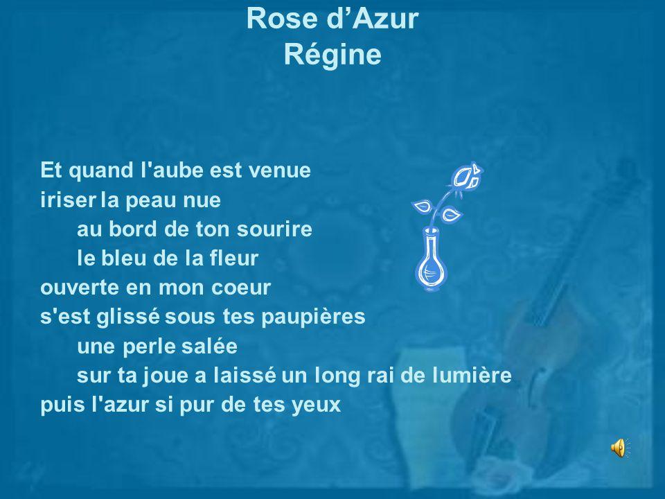 Rose dAzur Régine Et quand l'aube est venue iriser la peau nue au bord de ton sourire le bleu de la fleur ouverte en mon coeur s'est glissé sous tes p