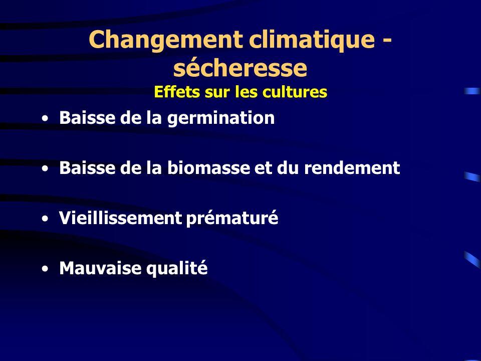 Baisse de la germination Baisse de la biomasse et du rendement Vieillissement prématuré Mauvaise qualité