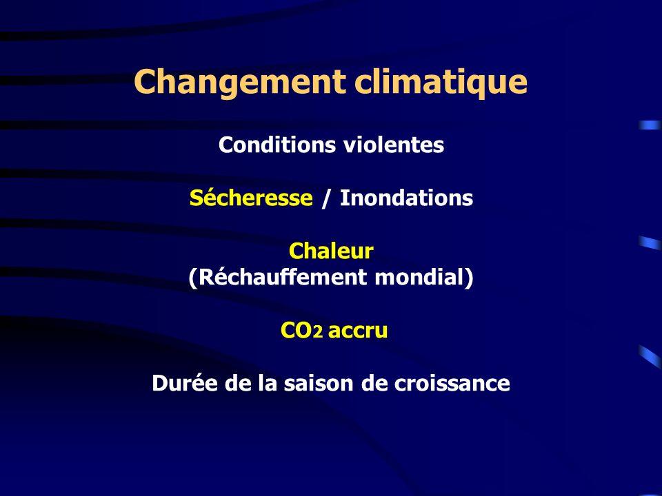 Changement climatique Conditions violentes Sécheresse / Inondations Chaleur (Réchauffement mondial) CO 2 accru Durée de la saison de croissance
