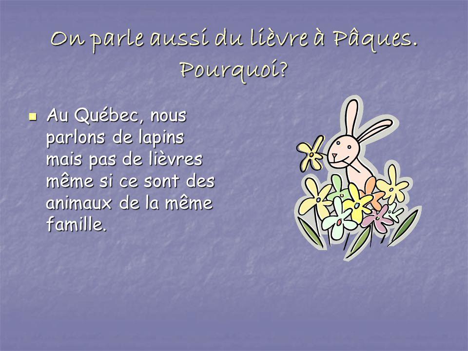 On parle aussi du lièvre à Pâques. Pourquoi? Au Québec, nous parlons de lapins mais pas de lièvres même si ce sont des animaux de la même famille. Au