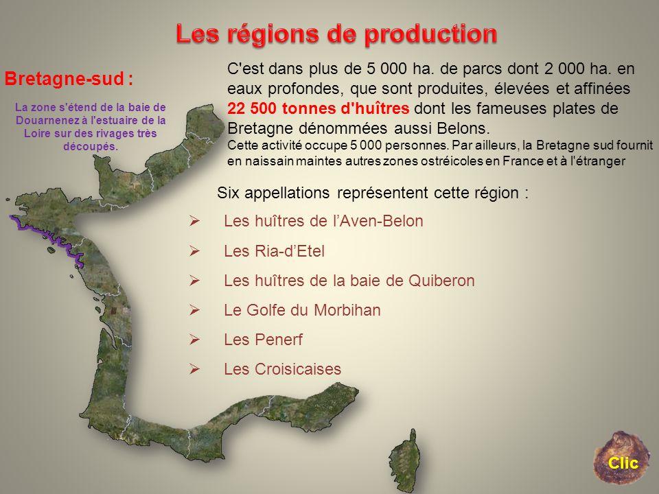 Bretagne-sud : La zone s'étend de la baie de Douarnenez à l'estuaire de la Loire sur des rivages très découpés. C'est dans plus de 5 000 ha. de parcs