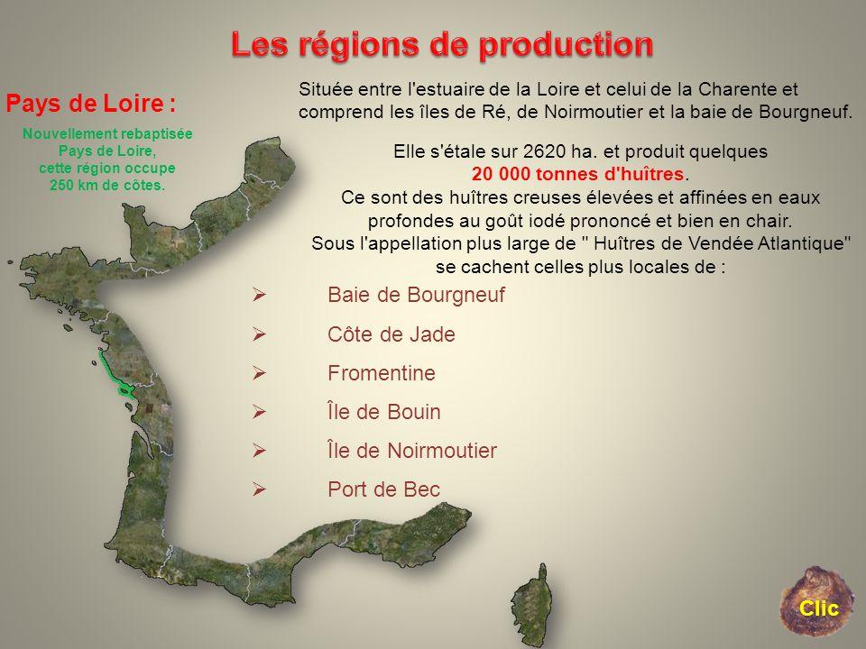 Pays de Loire : Nouvellement rebaptisée Pays de Loire, cette région occupe 250 km de côtes. Située entre l'estuaire de la Loire et celui de la Charent