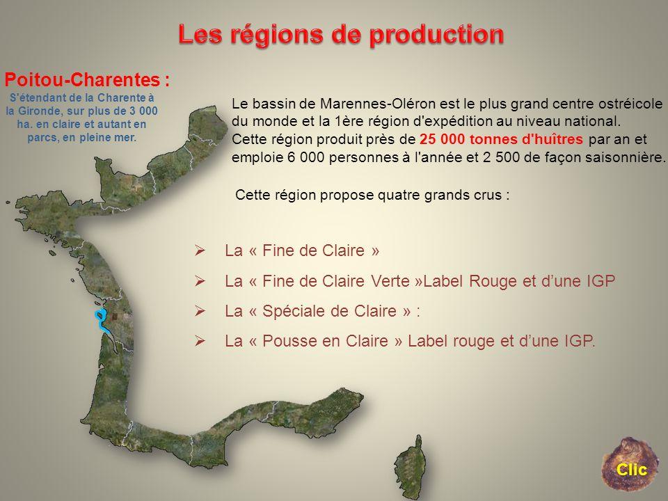 Poitou-Charentes : S'étendant de la Charente à la Gironde, sur plus de 3 000 ha. en claire et autant en parcs, en pleine mer. Le bassin de Marennes-Ol