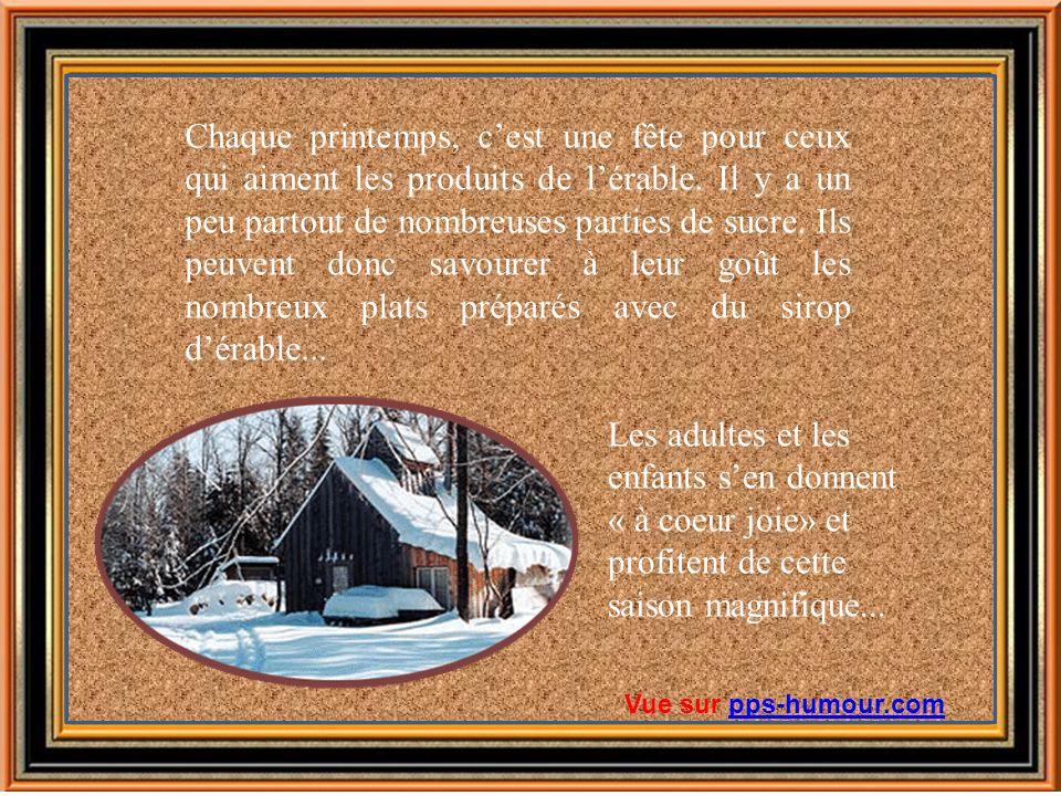 Bonne journée! Vue sur pps-humour.compps-humour.com