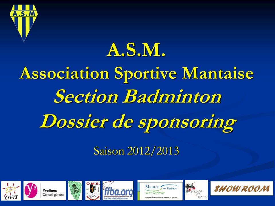 Sommaire Le badminton, notre discipline.Le badminton, notre discipline.