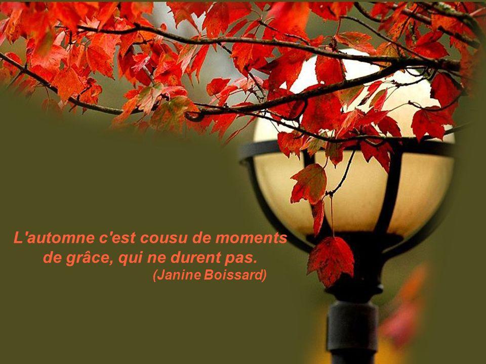 L automne c est cousu de moments de grâce, qui ne durent pas. (Janine Boissard)