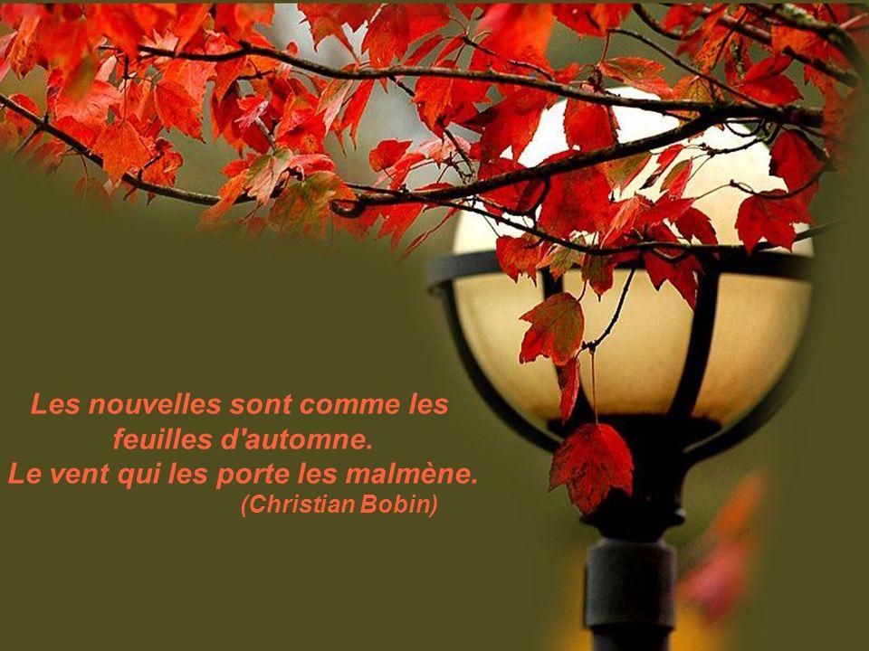Les nouvelles sont comme les feuilles d automne.Le vent qui les porte les malmène.