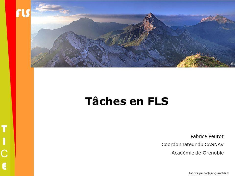 FLS TICETICE fabrice.peutot@ac-grenoble.fr Tâches en FLS Fabrice Peutot Coordonnateur du CASNAV Académie de Grenoble