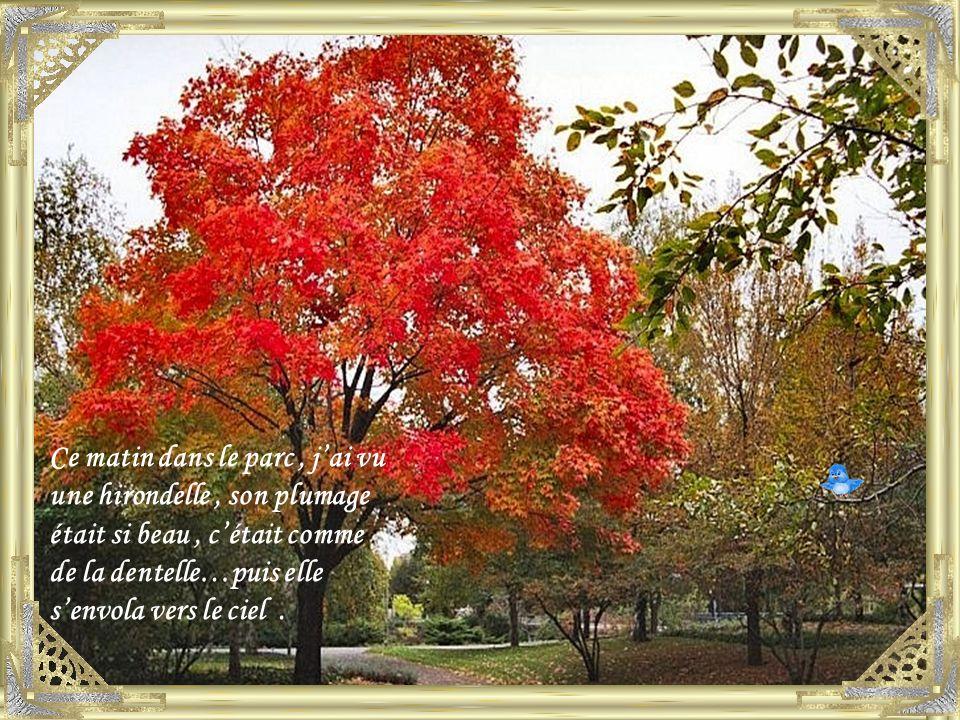 La nature sendort doucement et les feuilles dansent avec le vent, il y en a de toutes les couleurs et quand elles tombent, elles se posent en douceur.