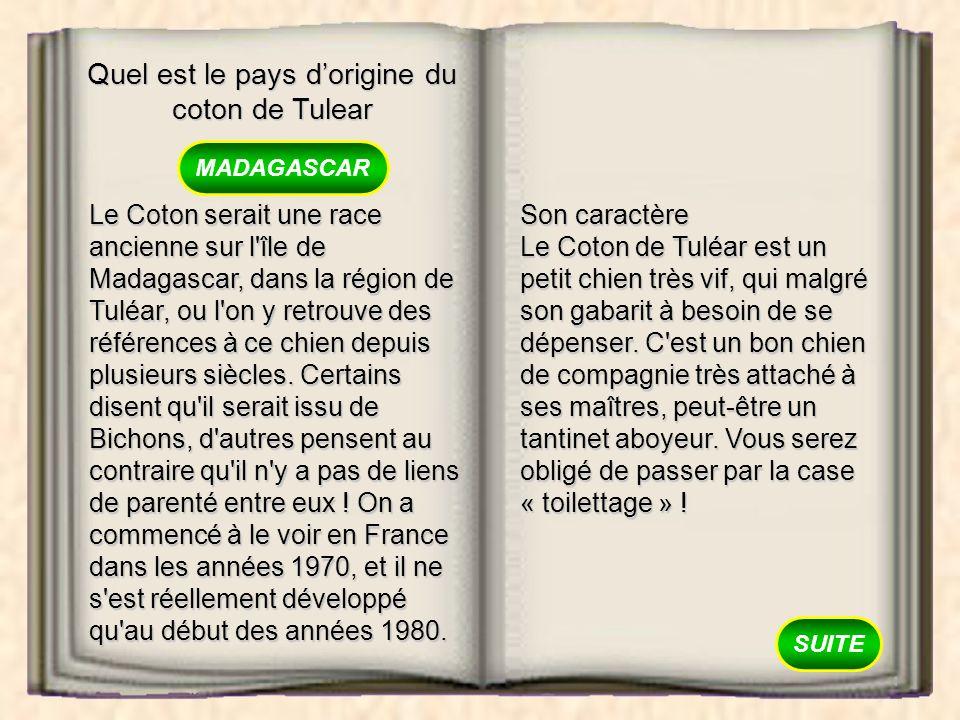 Quel est le pays dorigine du coton de Tulear MADAGASCAR LA RÉUNION LA CRÈTE