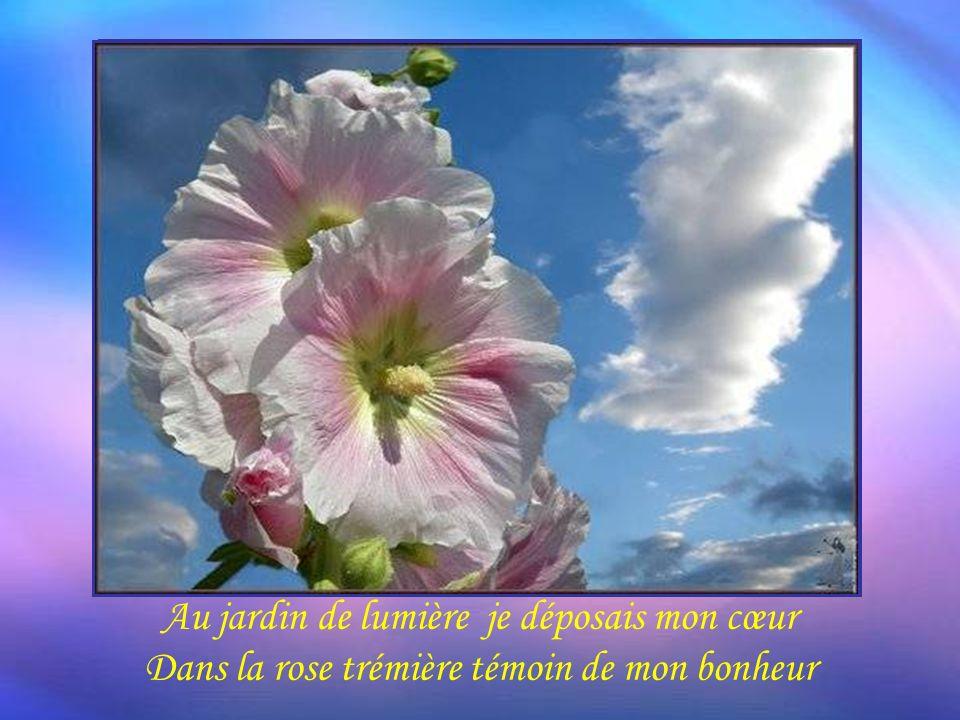 Au jardin de lumière je déposais mon cœur Dans la rose trémière témoin de mon bonheur