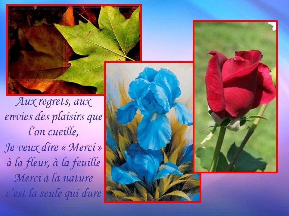 Aux regrets, aux envies des plaisirs que lon cueille, Je veux dire « Merci » à la fleur, à la feuille Merci à la nature cest la seule qui dure