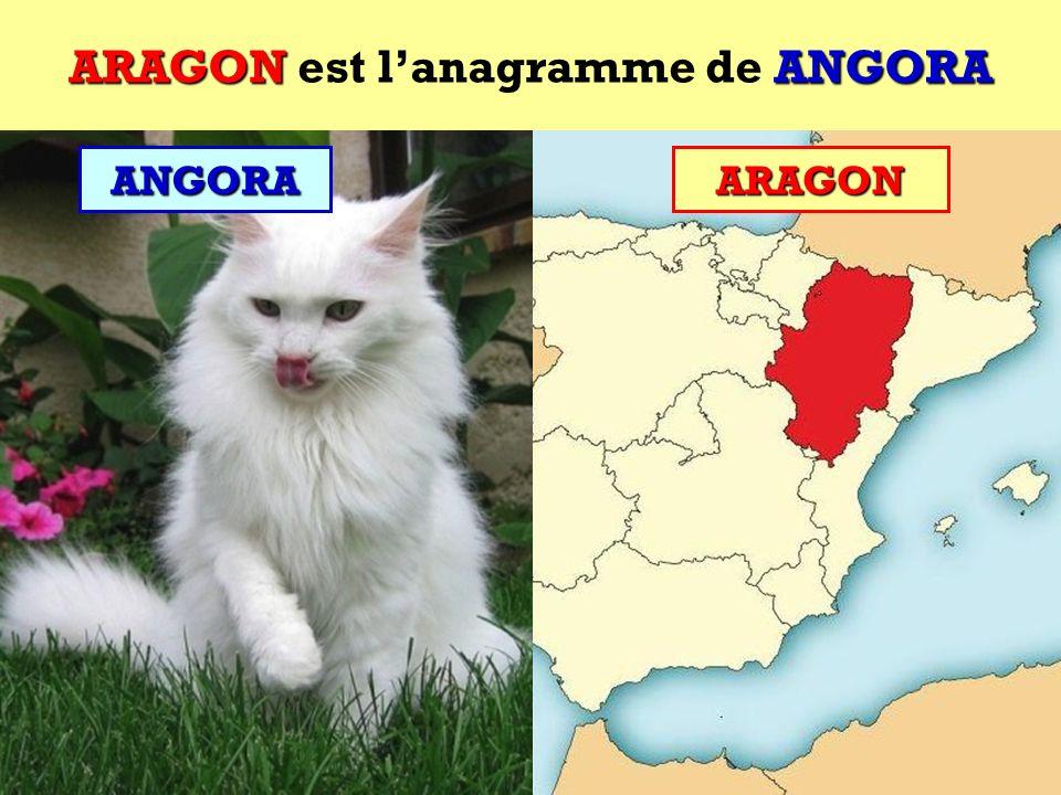 ANGORA Quel est lanagramme de ANGORA ?ANGORA Cest une communauté autonome espagnole !