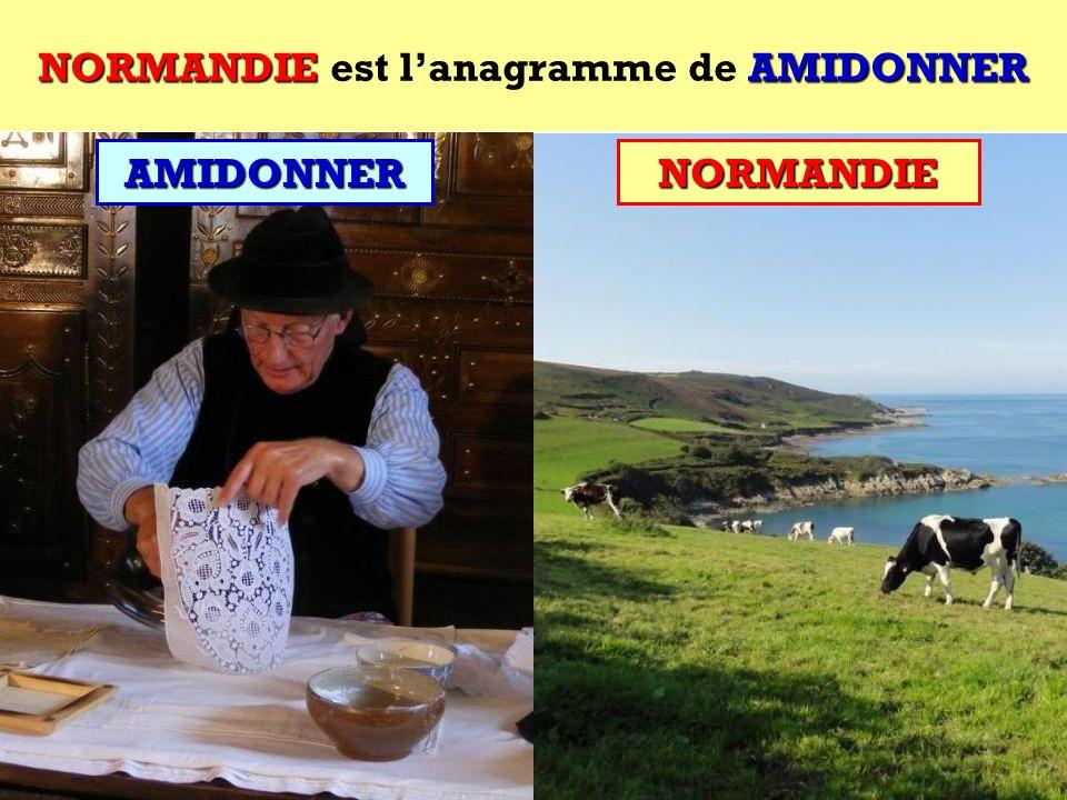 AMIDONNER Quel est lanagramme de AMIDONNER ?AMIDONNER Cest une région française !