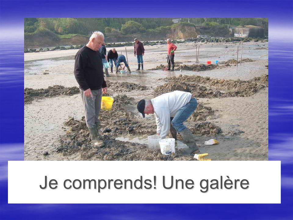 Rendez vous pont de Normandie 2