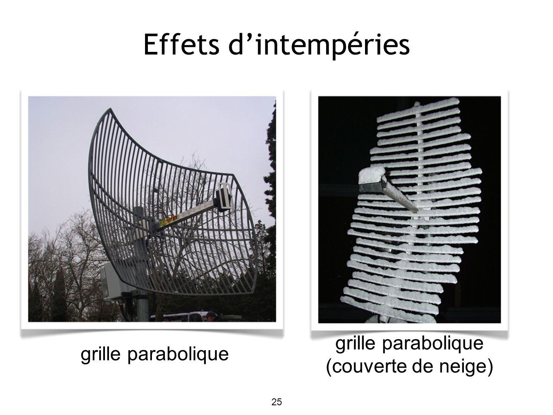 25 Effets dintempéries grille parabolique grille parabolique (couverte de neige)