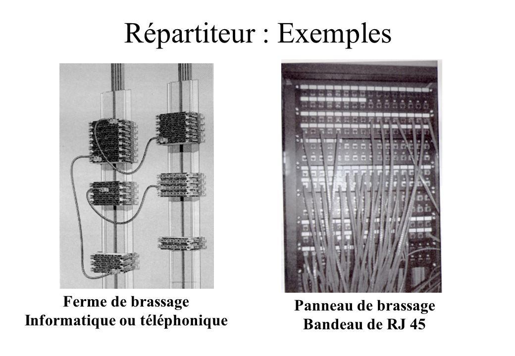 Répartiteur : Exemples Panneau de brassage Bandeau de RJ 45 Ferme de brassage Informatique ou téléphonique