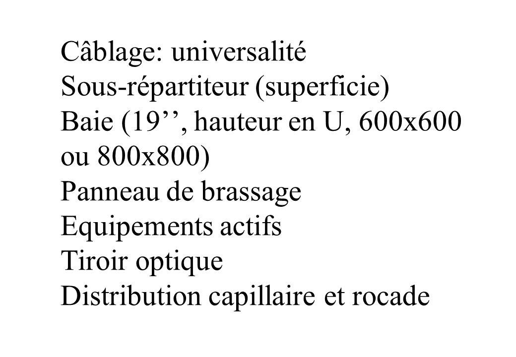 Câblage: universalité Sous-répartiteur (superficie) Baie (19, hauteur en U, 600x600 ou 800x800) Panneau de brassage Equipements actifs Tiroir optique Distribution capillaire et rocade