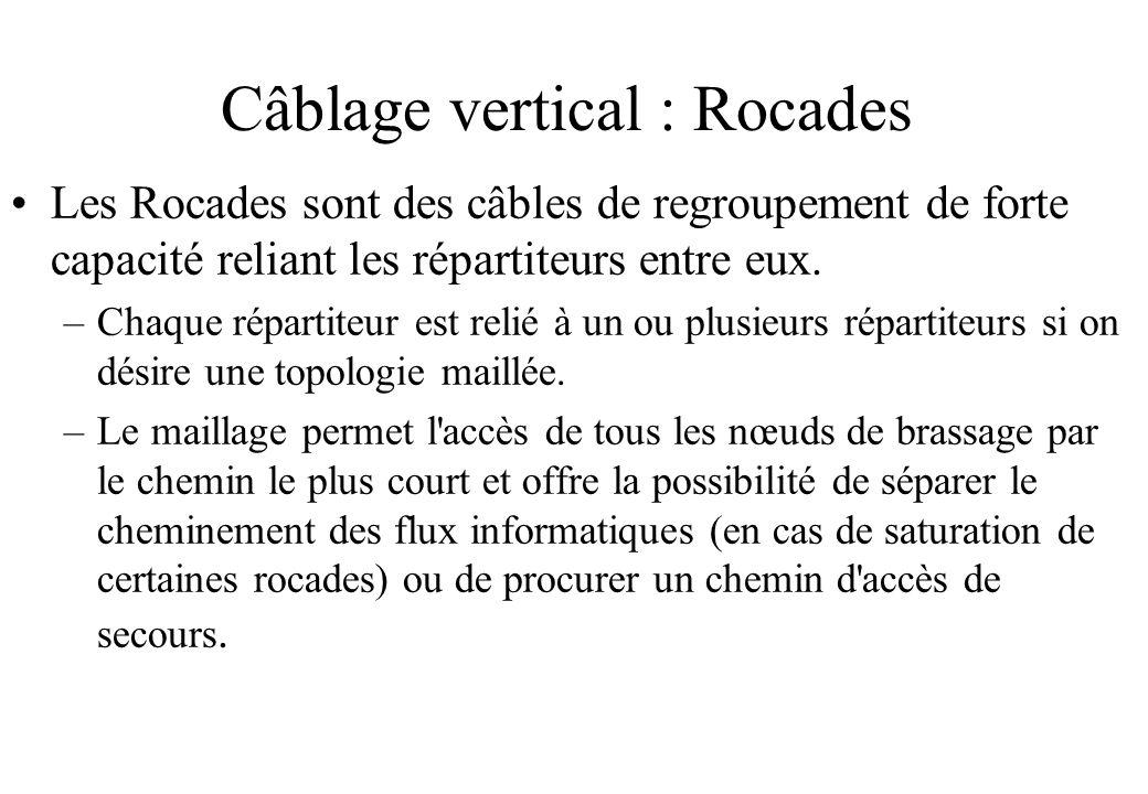 Câblage vertical : Rocades Les Rocades sont des câbles de regroupement de forte capacité reliant les répartiteurs entre eux.