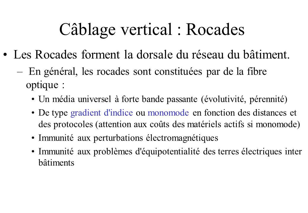 Câblage vertical : Rocades Les Rocades forment la dorsale du réseau du bâtiment.
