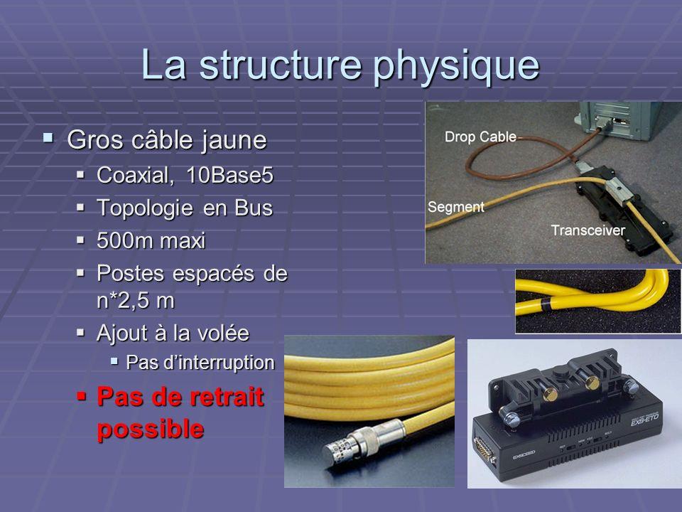 La structure physique Gros câble jaune Gros câble jaune Coaxial, 10Base5 Coaxial, 10Base5 Topologie en Bus Topologie en Bus 500m maxi 500m maxi Postes
