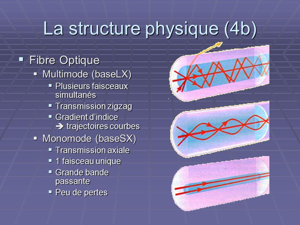 La structure physique (4b) Fibre Optique Fibre Optique Multimode (baseLX) Multimode (baseLX) Plusieurs faisceaux simultanés Plusieurs faisceaux simult