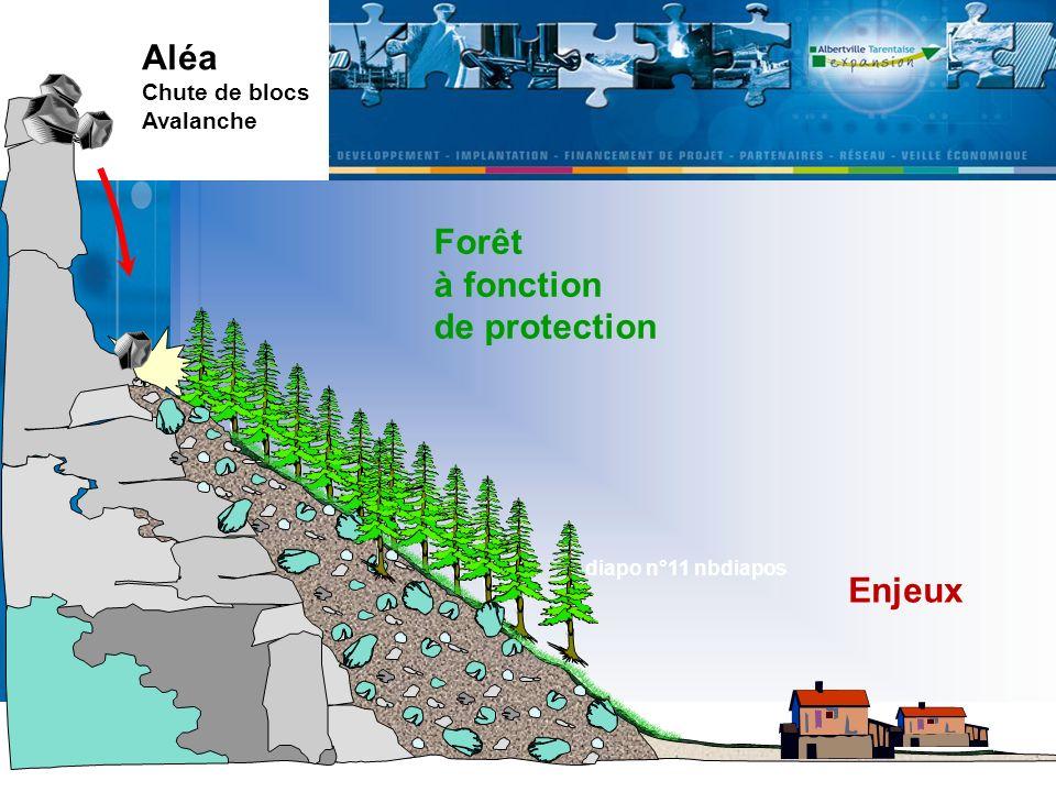 Aléa Chute de blocs Avalanche Forêt à fonction de protection Enjeux diapo n°11 nbdiapos