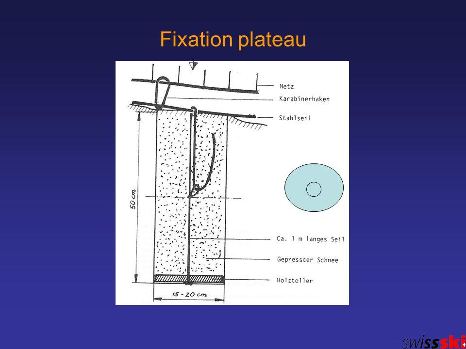 Fixation plateau