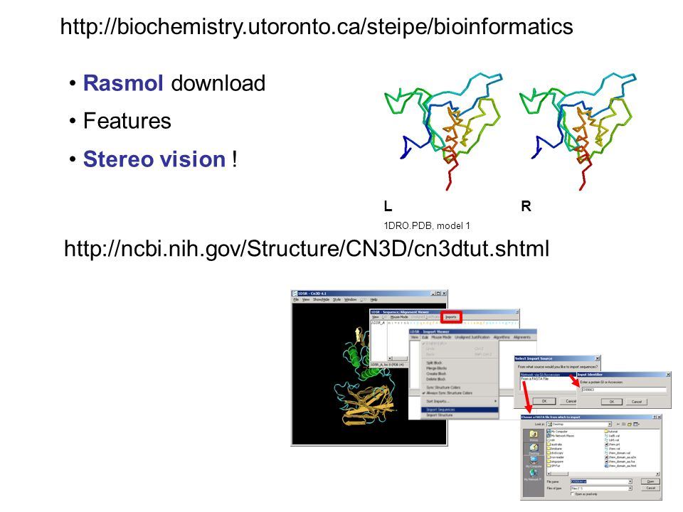 Rasmol download Features Stereo vision .