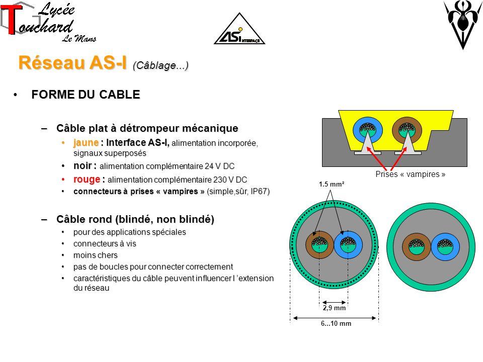 Réseau AS-I (Câblage...) Réseau AS-I (Câblage...) FORME DU CABLEFORME DU CABLE –Câble plat à détrompeur mécanique jaune : Interface AS-I, alimentation incorporée, signaux superposésjaune : Interface AS-I, alimentation incorporée, signaux superposés noir : alimentation complémentaire 24 V DCnoir : alimentation complémentaire 24 V DC rouge : alimentation complémentaire 230 V DCrouge : alimentation complémentaire 230 V DC connecteurs à prises « vampires » (simple,sûr, IP67)connecteurs à prises « vampires » (simple,sûr, IP67) –Câble rond (blindé, non blindé) pour des applications spécialespour des applications spéciales connecteurs à visconnecteurs à vis moins chersmoins chers pas de boucles pour connecter correctementpas de boucles pour connecter correctement caractéristiques du câble peuvent influencer l extension du réseaucaractéristiques du câble peuvent influencer l extension du réseau 2,9 mm 1.5 mm² 6...10 mm Prises « vampires »