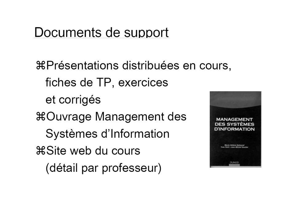 B. Lemaire 200745 Ressources des SI