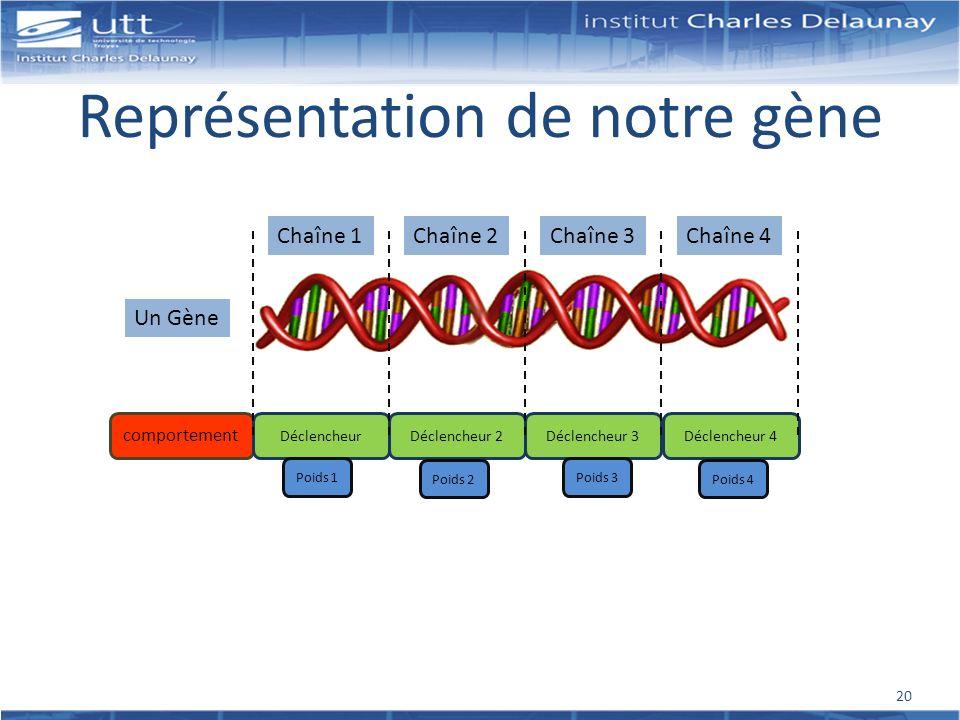 Représentation de notre gène Un Gène comportement DéclencheurDéclencheur 2Déclencheur 3Déclencheur 4 Chaîne 1Chaîne 2Chaîne 3Chaîne 4 Poids 1 Poids 2