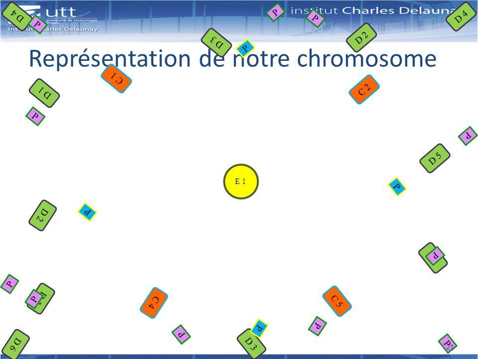 Représentation de notre chromosome E 1 C 2 C 1 C 5 C 4 D 2 D 1 D 2 D 3 D 5 D 2 D 3 D 4 D 6 P P P P P P P P P P P P P P P 21