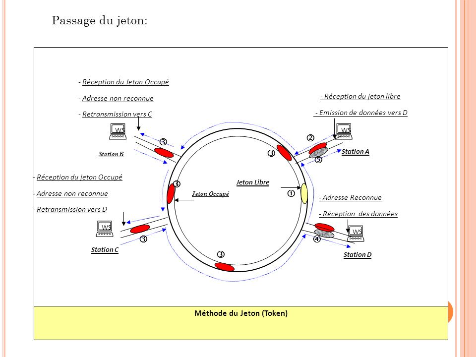 Passage du jeton: Méthode du Jeton (Token) WS WS WS WS Station D Station A Station B Station C - Réception du jeton libre - Emission de données vers D