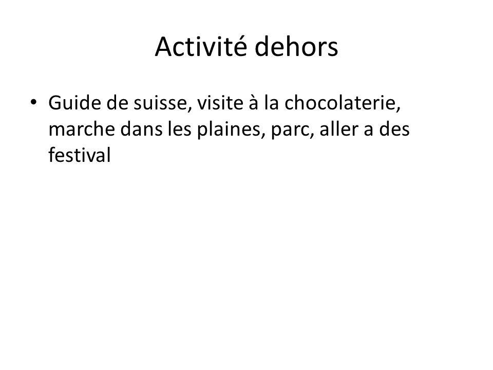 Activité dehors Guide de suisse, visite à la chocolaterie, marche dans les plaines, parc, aller a des festival