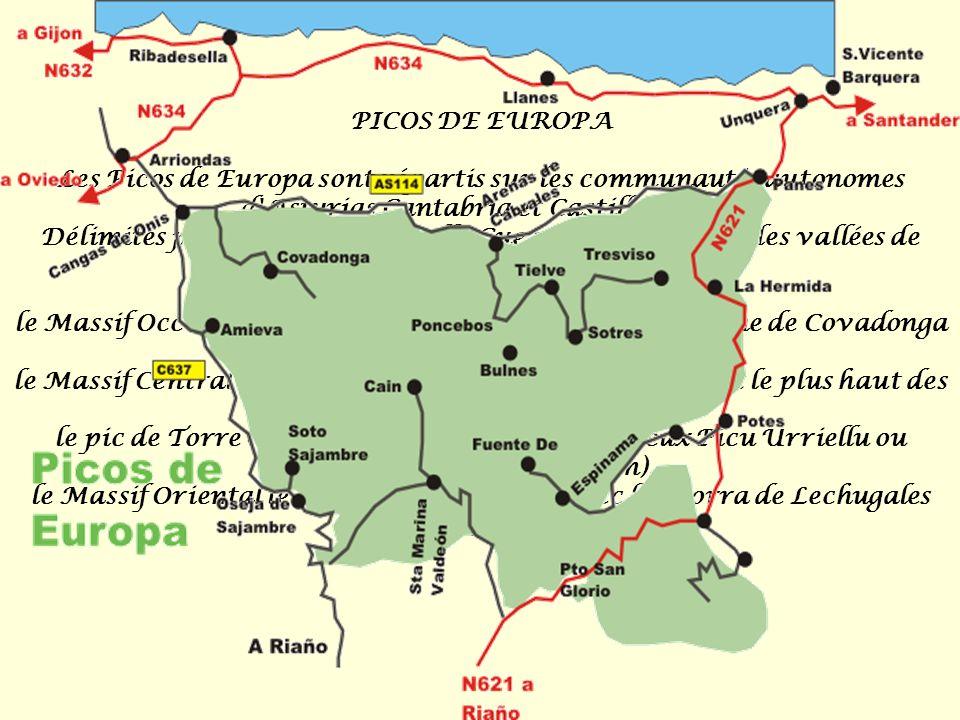 Escudo de Cantabria (España): El escudo de Cantabria es de forma cuadrilonga, con la punta redondeada de estilo español y el campo cortado. En campo d
