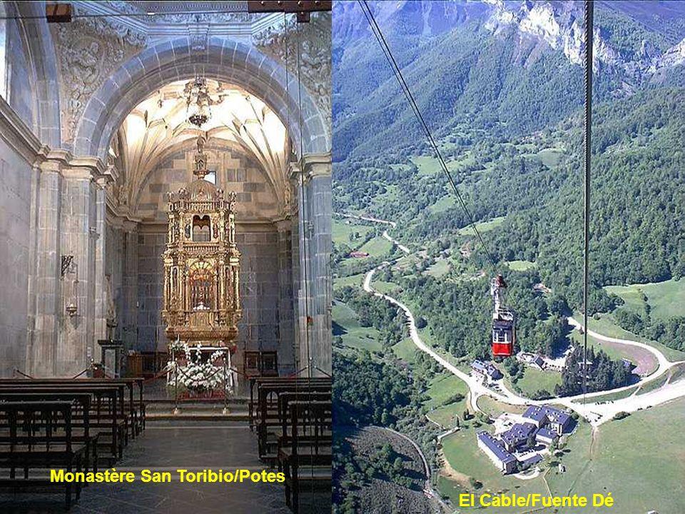 En arrivant de la Costa Cantabria et de Santander, litinéraire vers le parc de Los Picos de Europa passe par les gorges de La Hermida, qui tiennent le