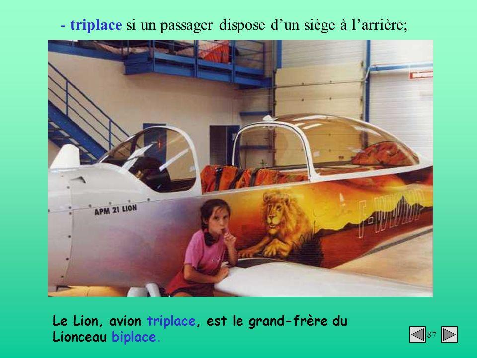 87 - triplace si un passager dispose dun siège à larrière; Le Lion, avion triplace, est le grand-frère du Lionceau biplace.