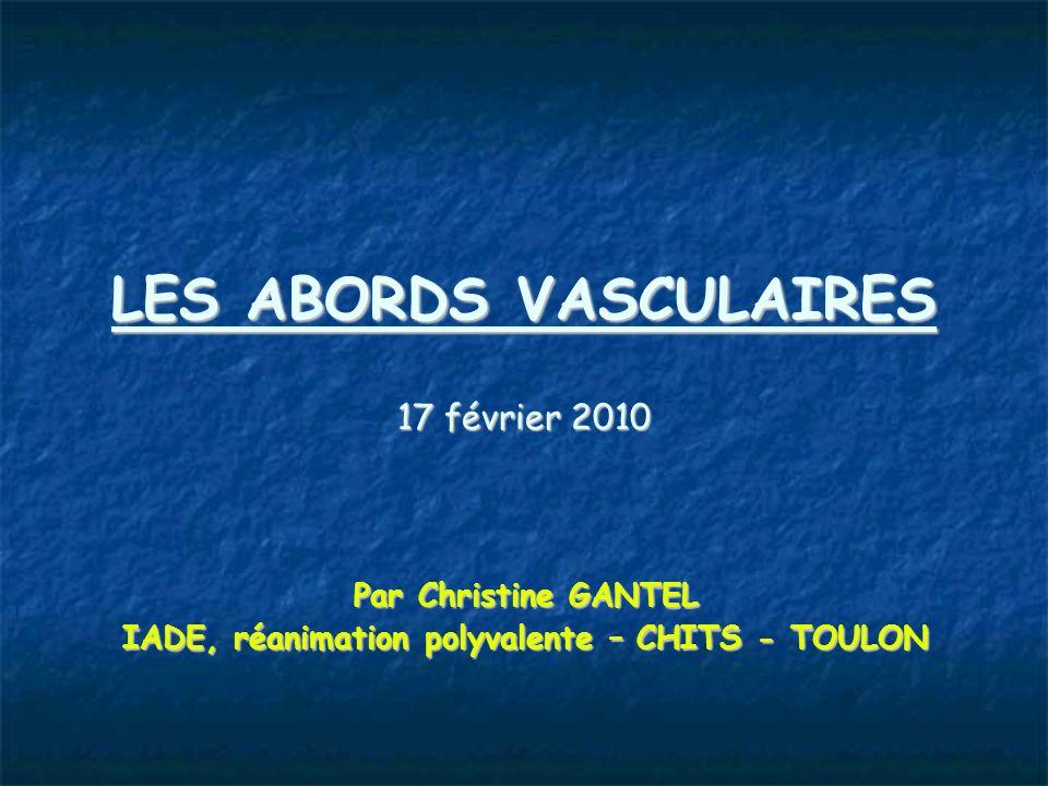 LES ABORDS VASCULAIRES 17 février 2010 Par Christine GANTEL IADE, réanimation polyvalente – CHITS - TOULON