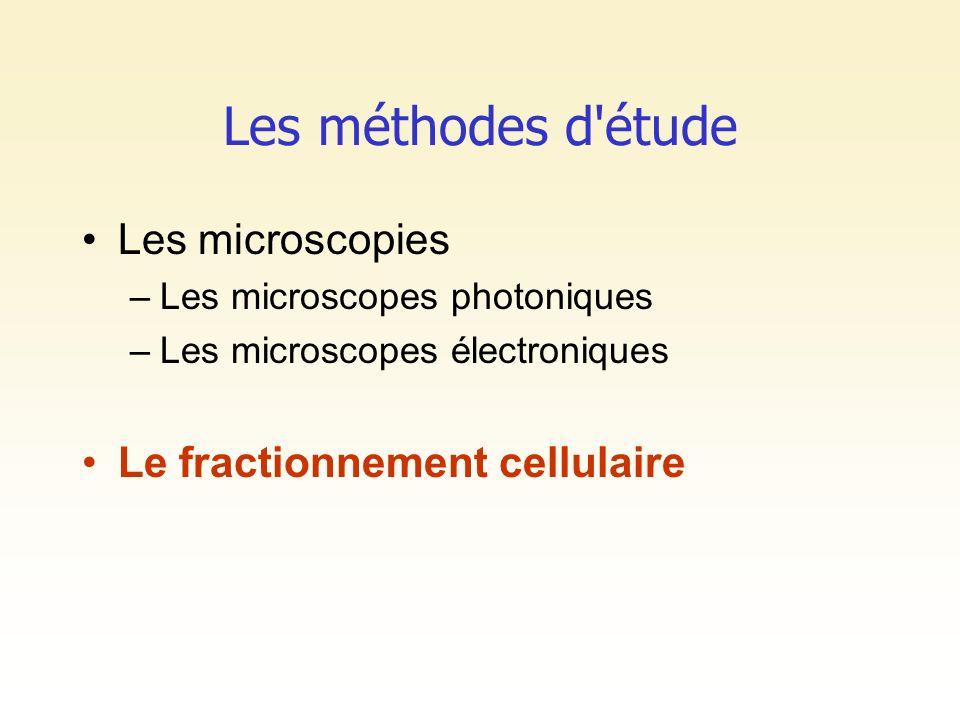 Les méthodes d'étude Les microscopies –Les microscopes photoniques –Les microscopes électroniques Le fractionnement cellulaire
