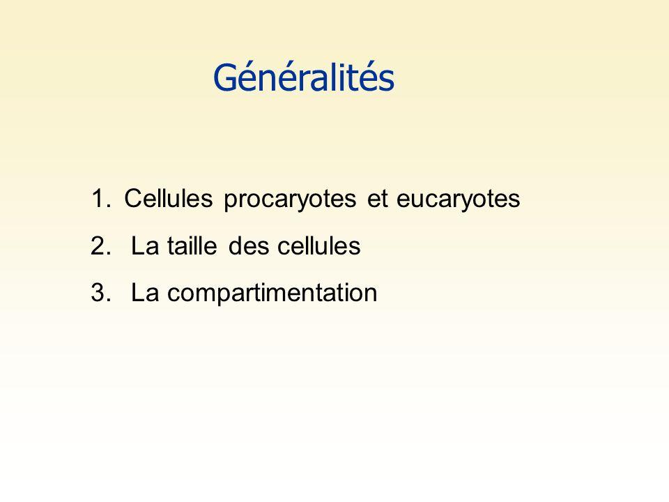 Généralités 1.Cellules procaryotes et eucaryotes 2. La taille des cellules 3. La compartimentation