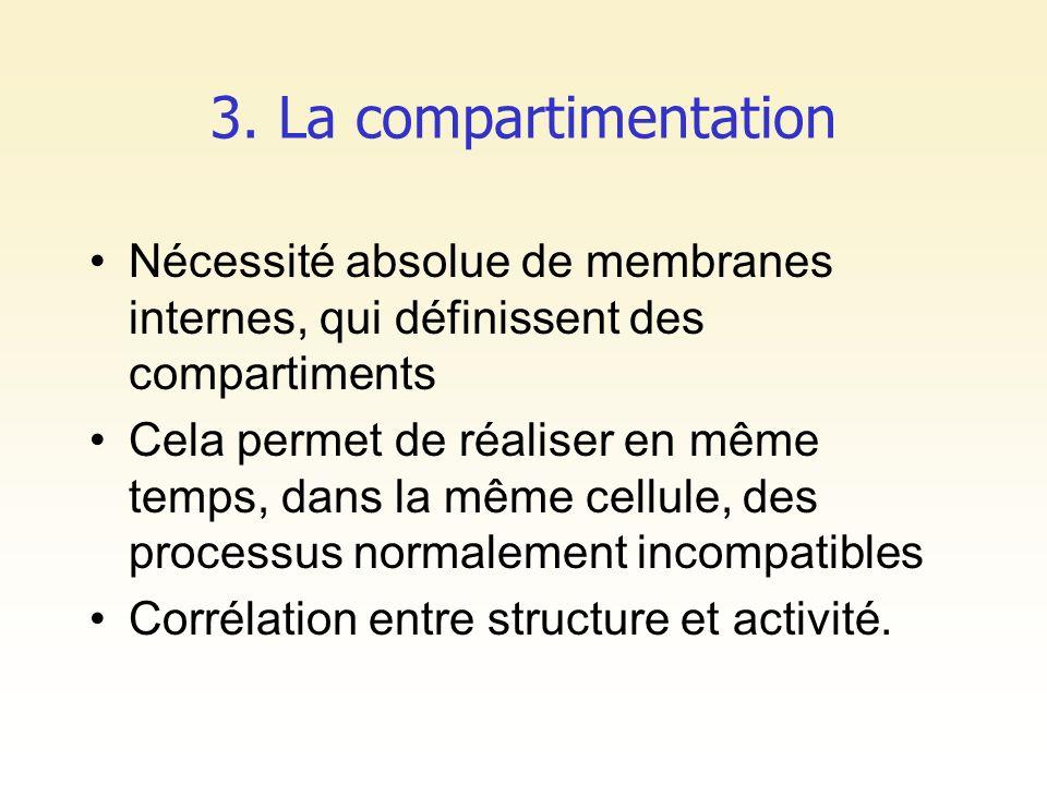 3. La compartimentation Nécessité absolue de membranes internes, qui définissent des compartiments Cela permet de réaliser en même temps, dans la même
