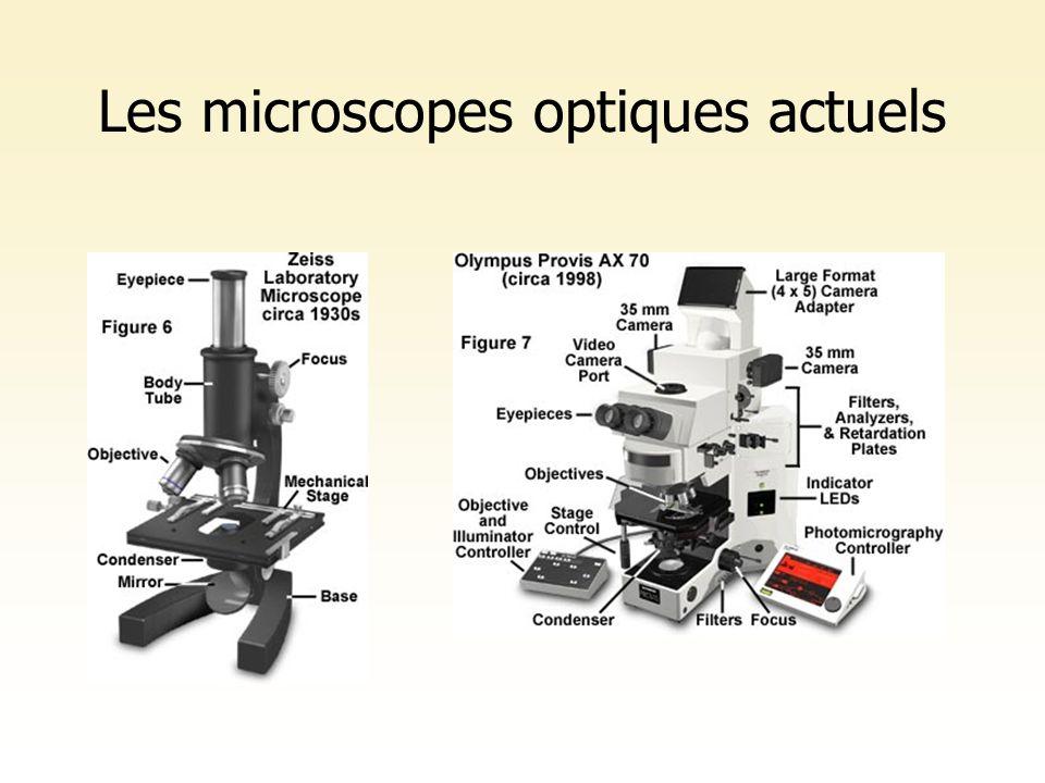 Les microscopes optiques actuels