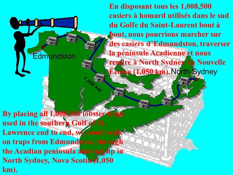 Edmundston North Sydney En disposant tous les 1,008,500 casiers à homard utilisés dans le sud du Golfe du Saint-Laurent bout à bout, nous pourrions ma