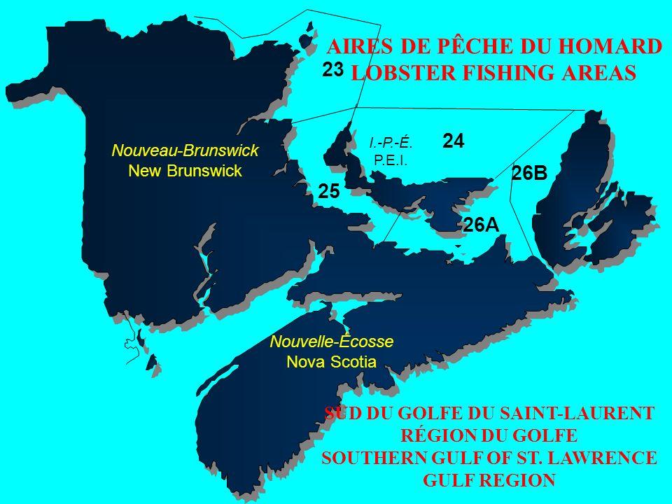24 26A 26B 25 23 Nouveau-Brunswick New Brunswick Nouvelle-Écosse Nova Scotia I.-P.-É. P.E.I. AIRES DE PÊCHE DU HOMARD LOBSTER FISHING AREAS SUD DU GOL