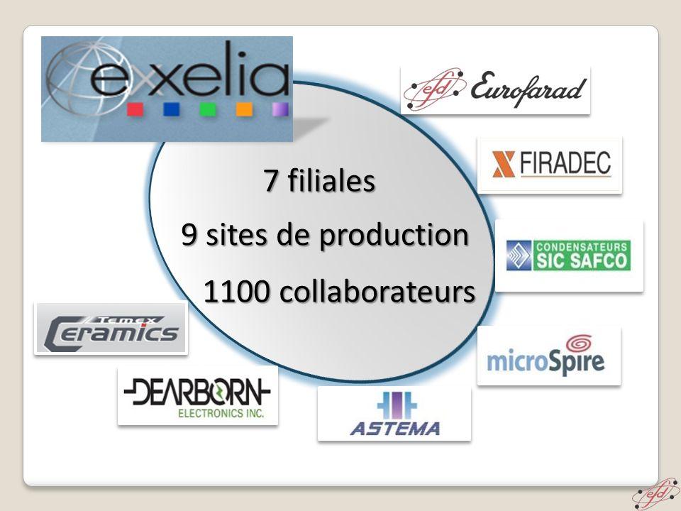 est une société Française fondée en 1965.
