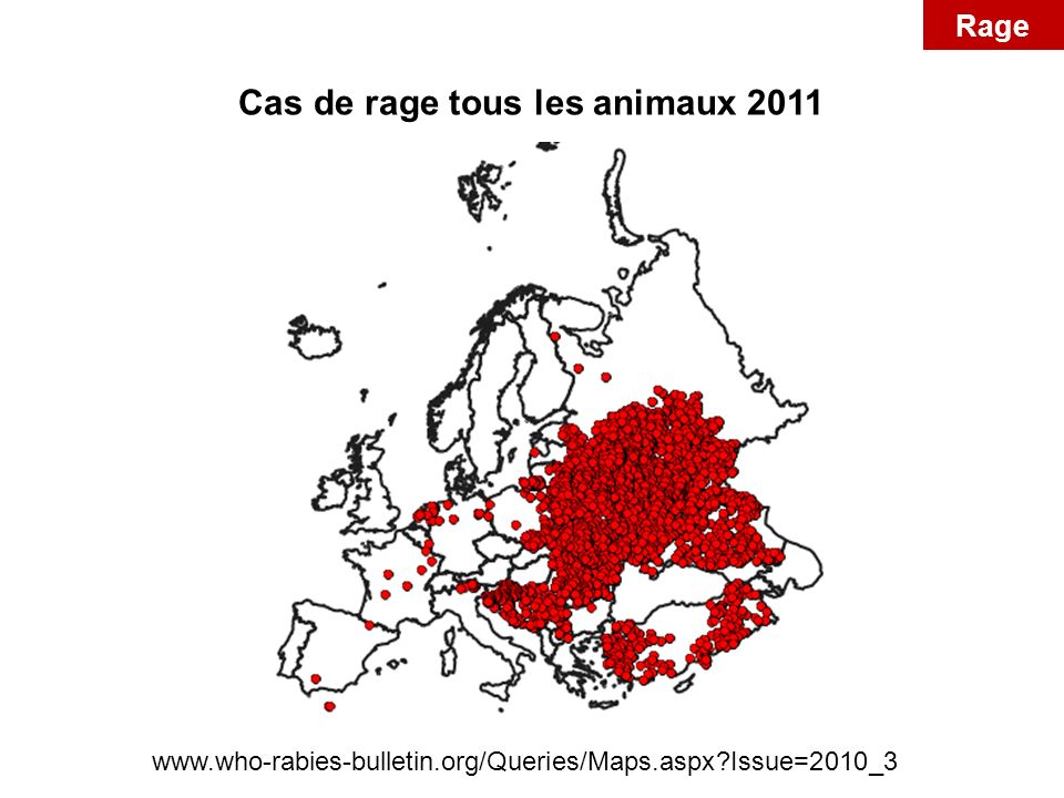 Cas de rage tous les animaux 2011 www.who-rabies-bulletin.org/Queries/Maps.aspx?Issue=2010_3 Rage